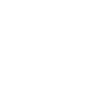 The Museum of Tourism Logo